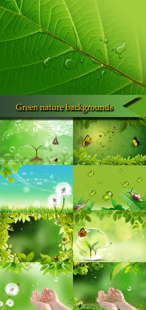 Stunning green nature backgrounds