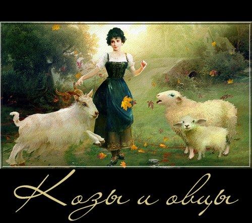 Символ 2015 - козы и овцы на прозрачном фоне