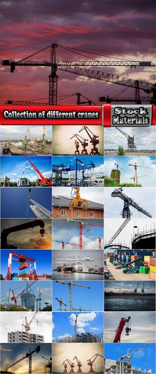 Collection of different cranes 25 UHQ Jpeg
