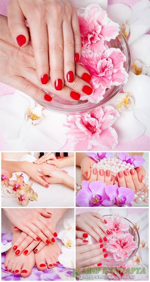 Маникюр и педикюр, женские руки и ноги / Manicure and pedicure, woman's ha ...
