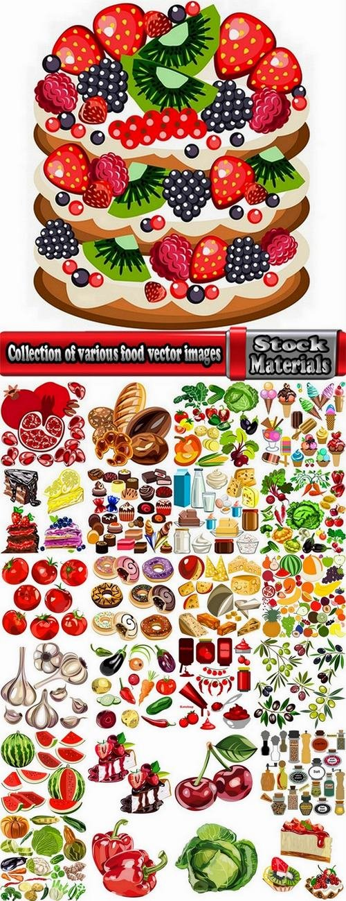 Collection of various food vector images 25 Eps