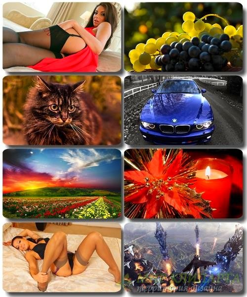 Mix Красочных картинок - Обои для рабочего стола (часть 48)