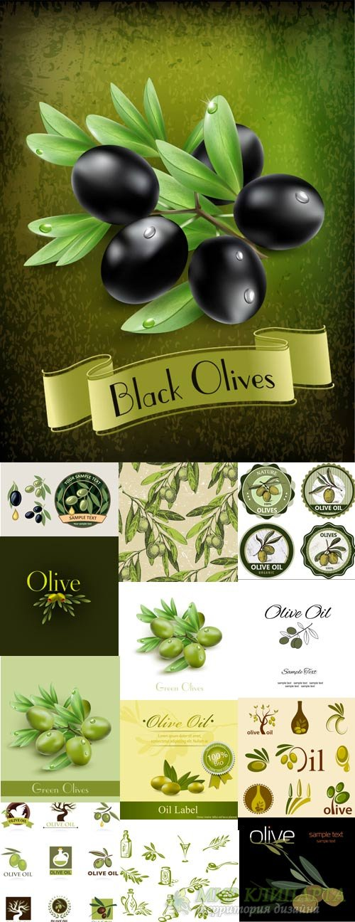 Green and black olives, olive oil