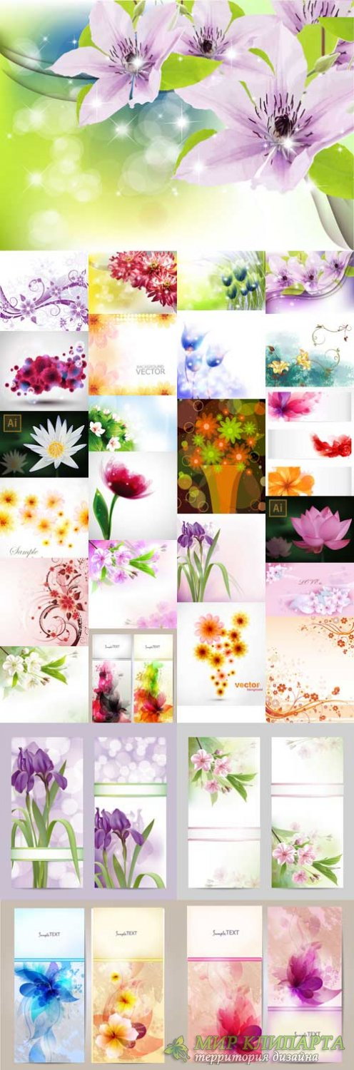 Stunning colorful flowers vector