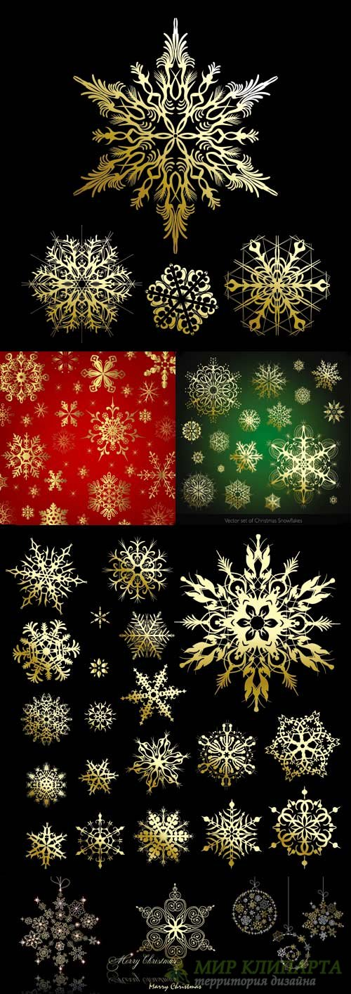 Winter gold snowflakes vector
