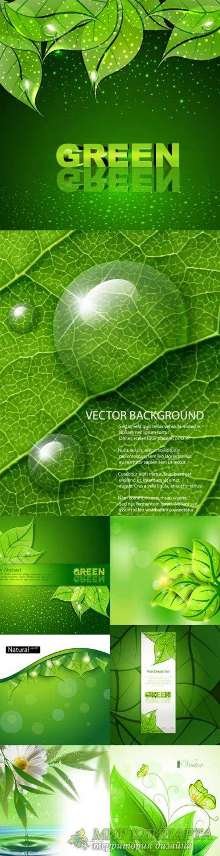 Свежие зеленые фоны