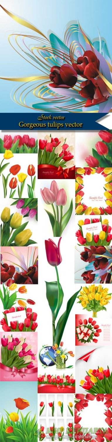 Gorgeous tulips vector