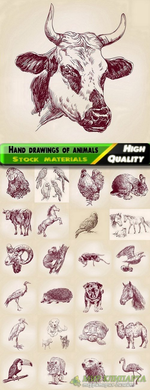 Hand drawings of animals in vector from stock - 25 Eps