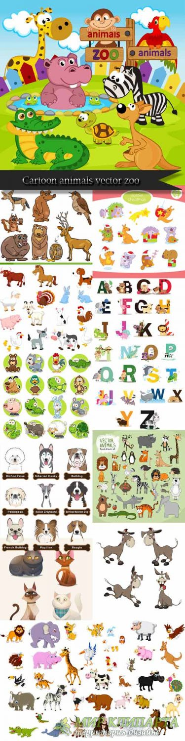Cartoon animals vector zoo