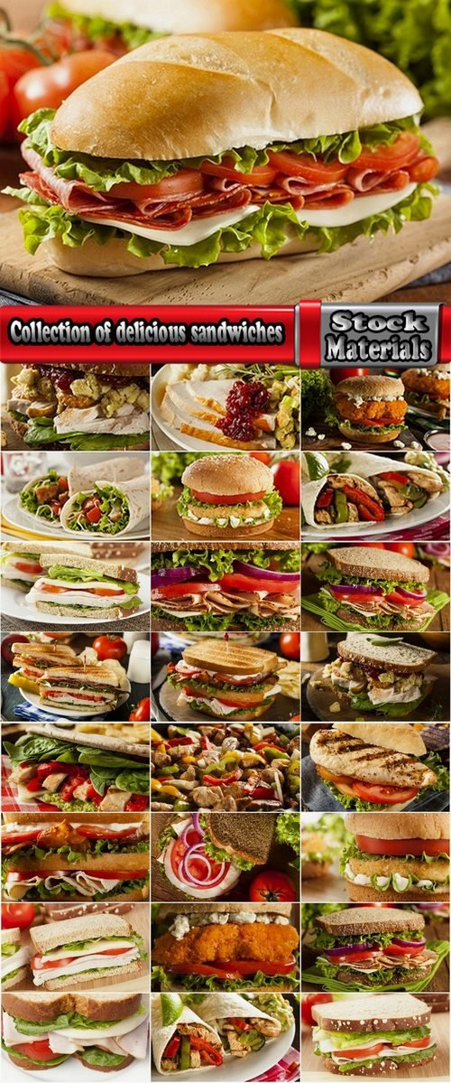 Collection of delicious sandwiches 25 UHQ Jpeg