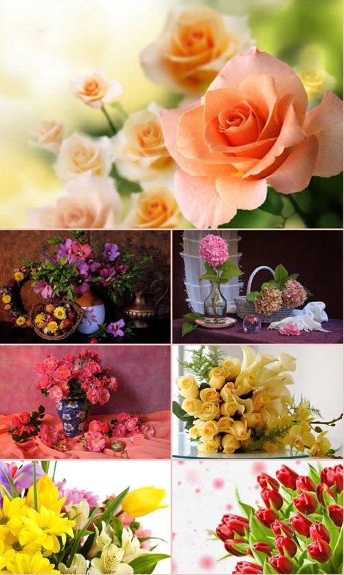 Обои для рабочего стола красивые цветы. Часть 19
