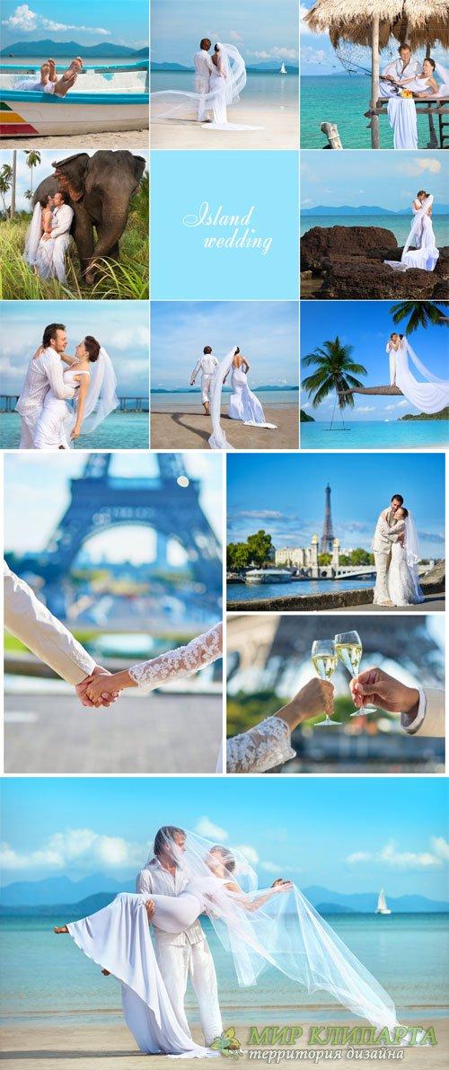 Wedding, the bride and groom - stock photos
