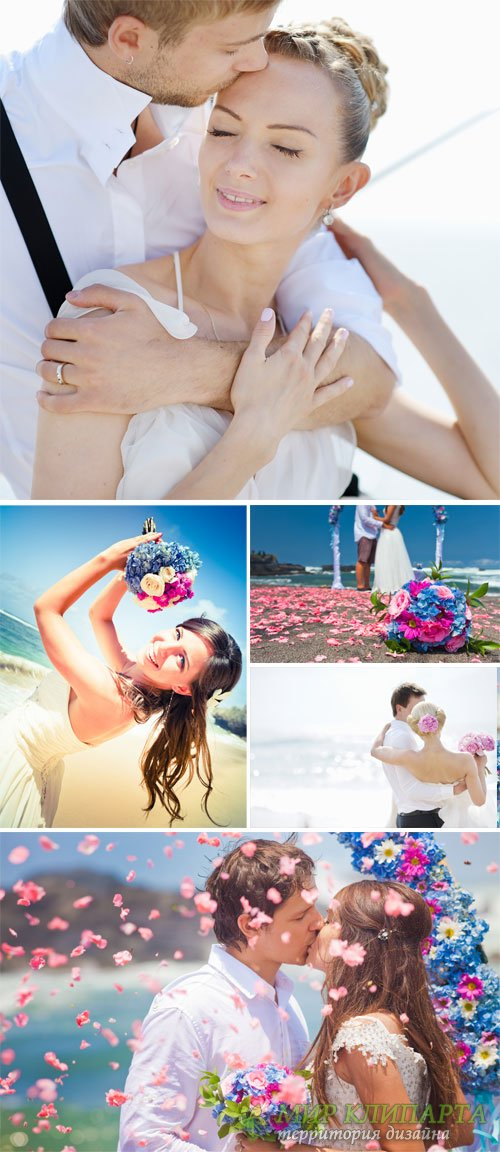 Wedding, family, bride and groom - stock photos