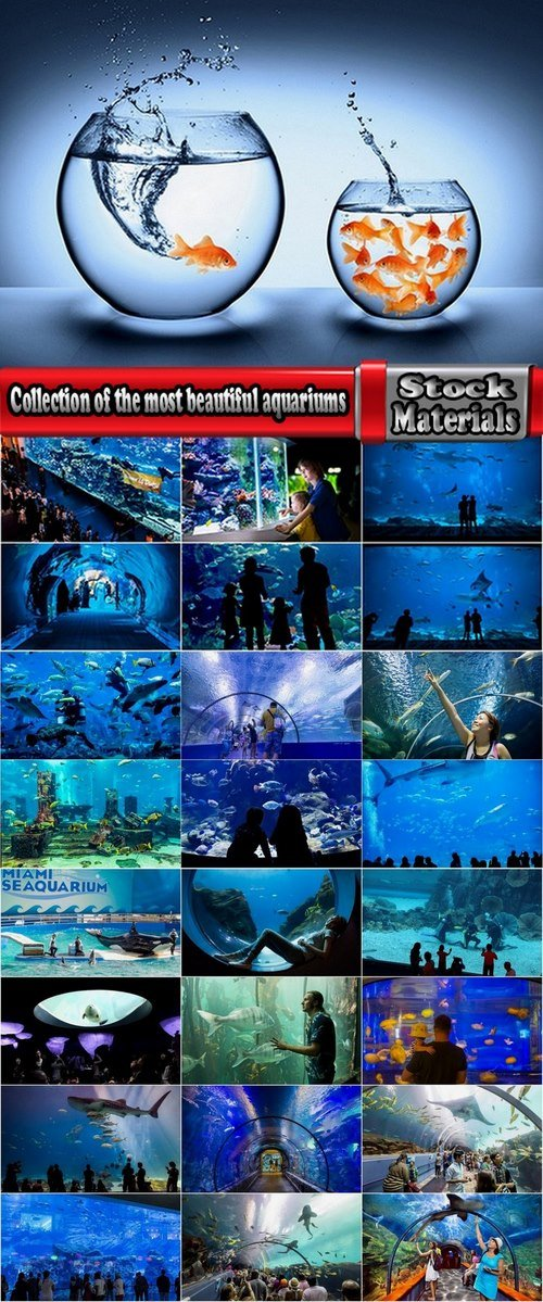 Collection of the most beautiful aquariums 25 UHQ Jpeg