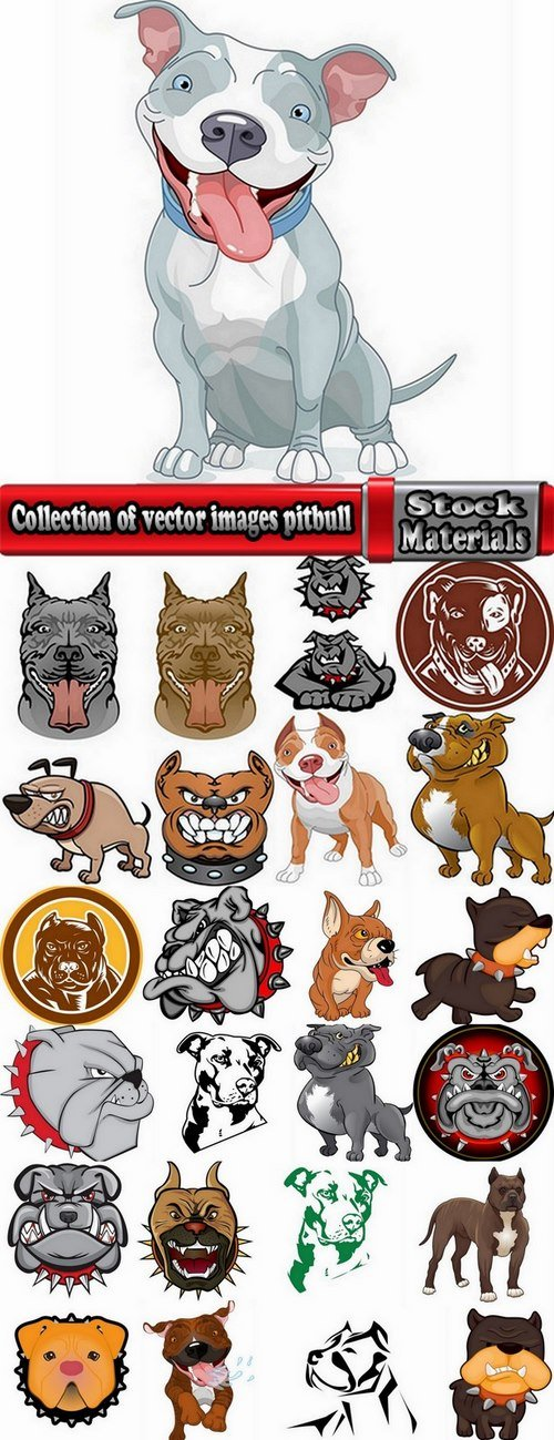 Collection of vector images pitbull 25 Eps