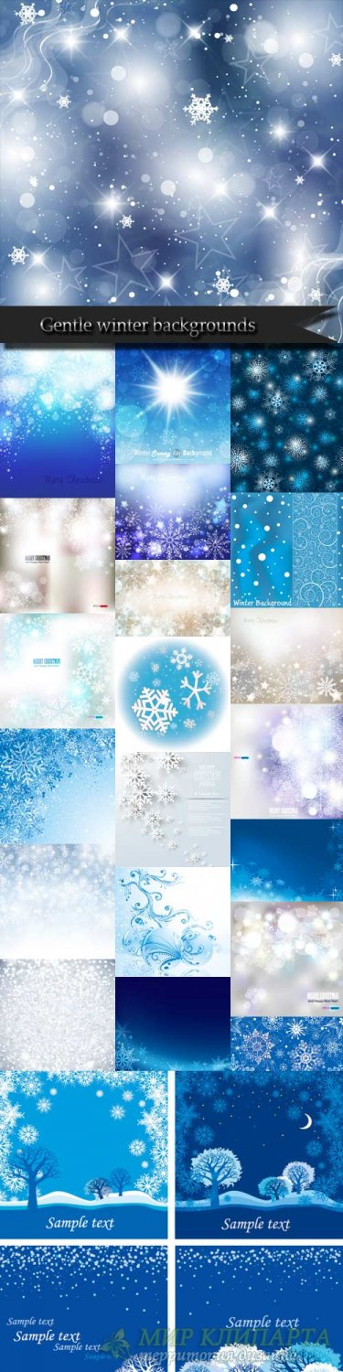 Gentle winter backgrounds vector