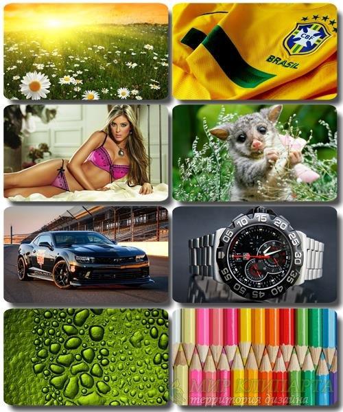Mix Красочных картинок - Обои для рабочего стола (часть 55)