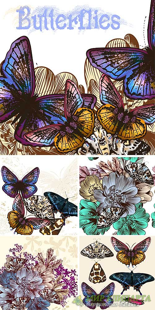 Beautiful butterflies, vector backgrounds with flowers