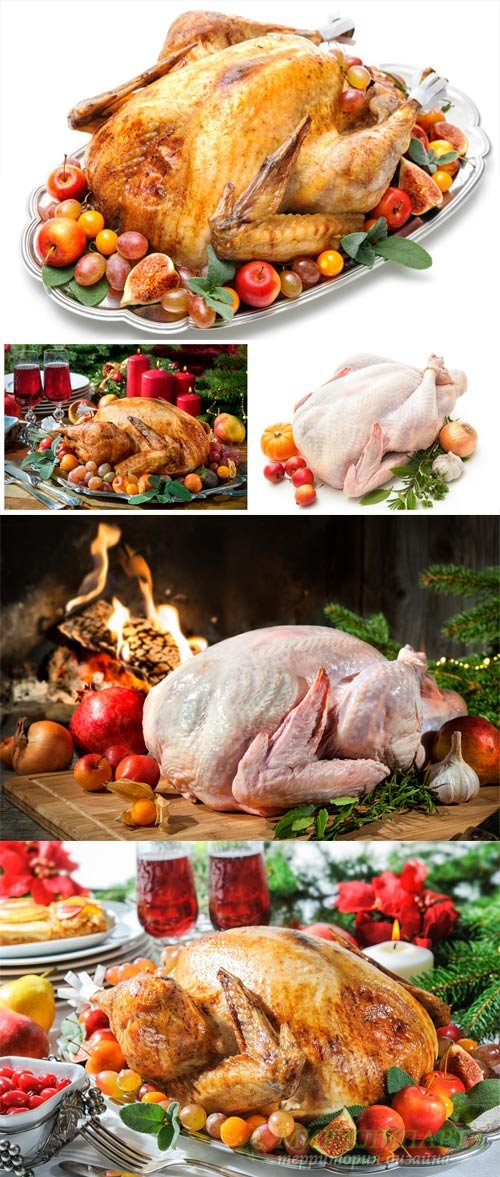 Festive Christmas food, baked chicken - stock photos