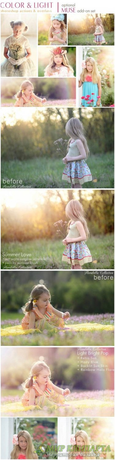Florabella Collection - Color and Light Photoshop Actions and Overlays
