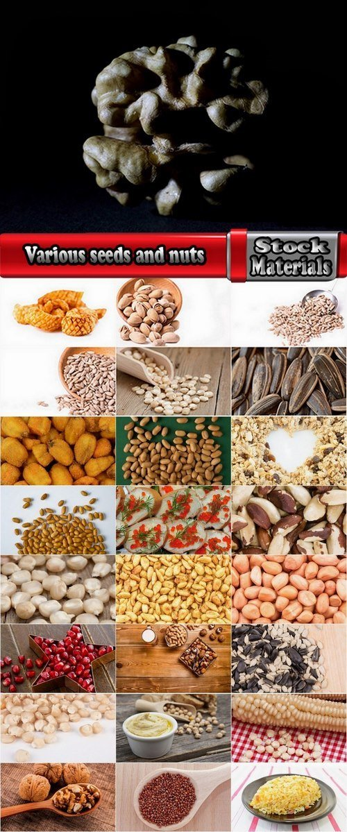 Various seeds and nuts 25 HQ Jpeg
