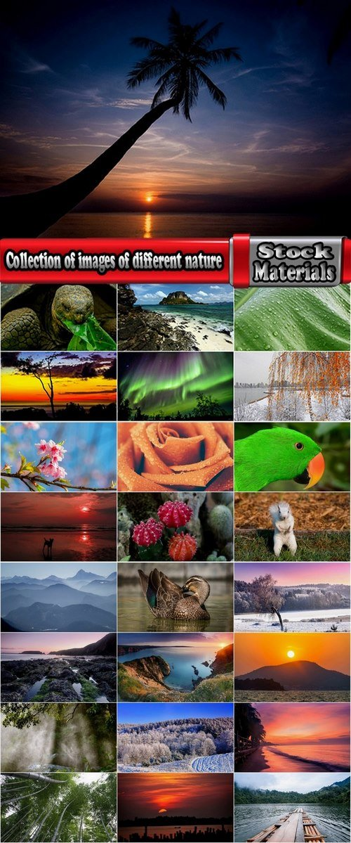 Collection of images of different nature 25 HQ Jpeg