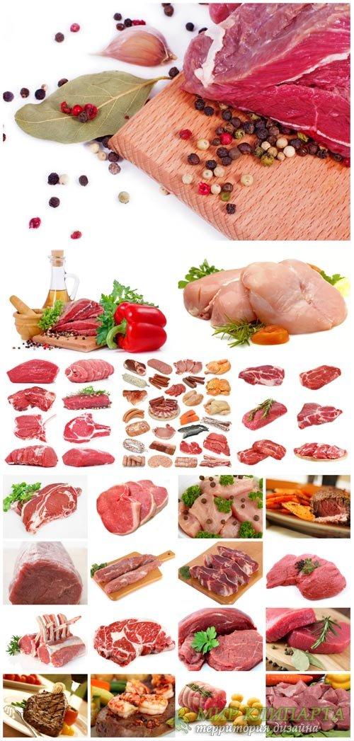 Meat with herbs and spices - stock photos