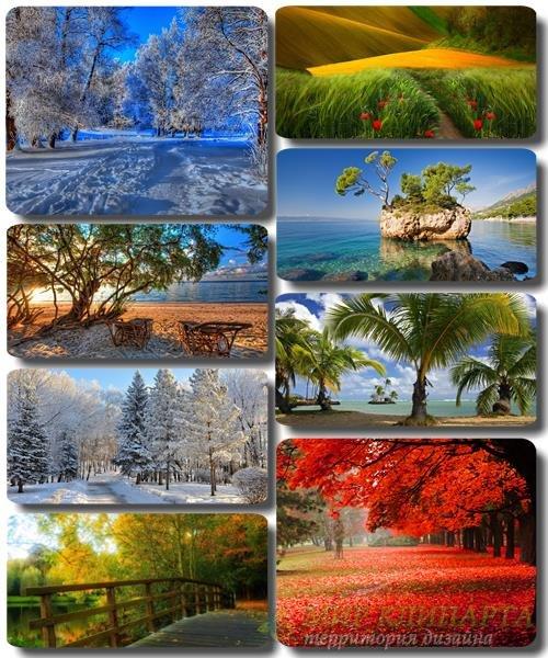 Обои Удивительно красивая природа - Фото альбом 30