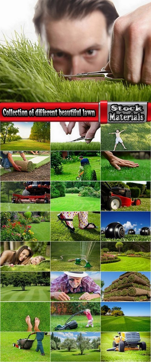 Collection of different beautiful lawn 25 HQ Jpeg