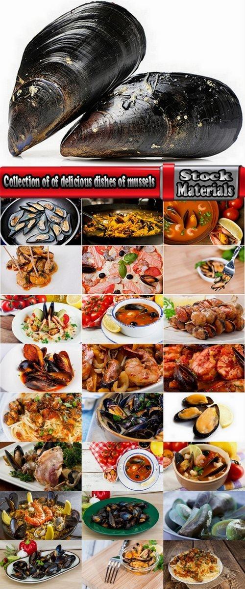 Collection of of delicious dishes of mussels 25 HQ Jpeg