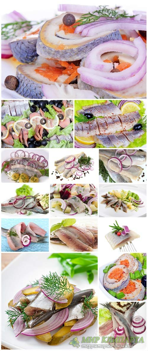 Fish, herring fillets - Stock photo
